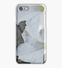 Lilies in Pencil iPhone Case/Skin