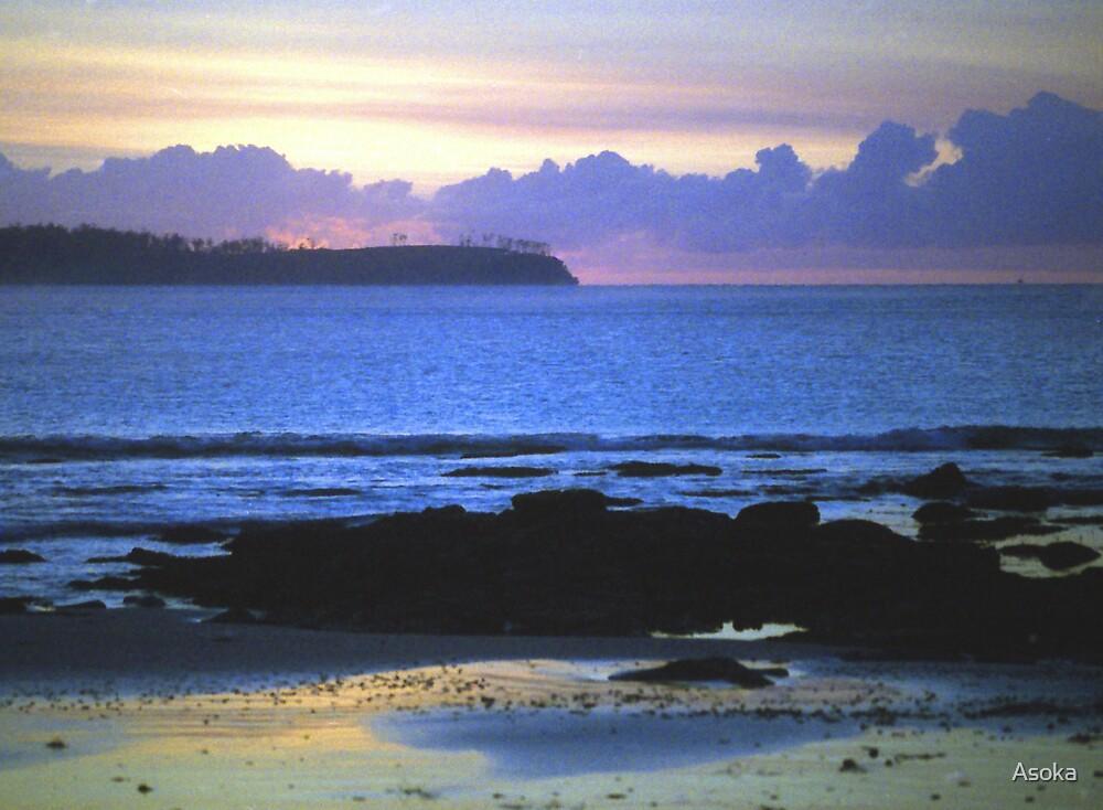 The Perfect Dawn by Asoka