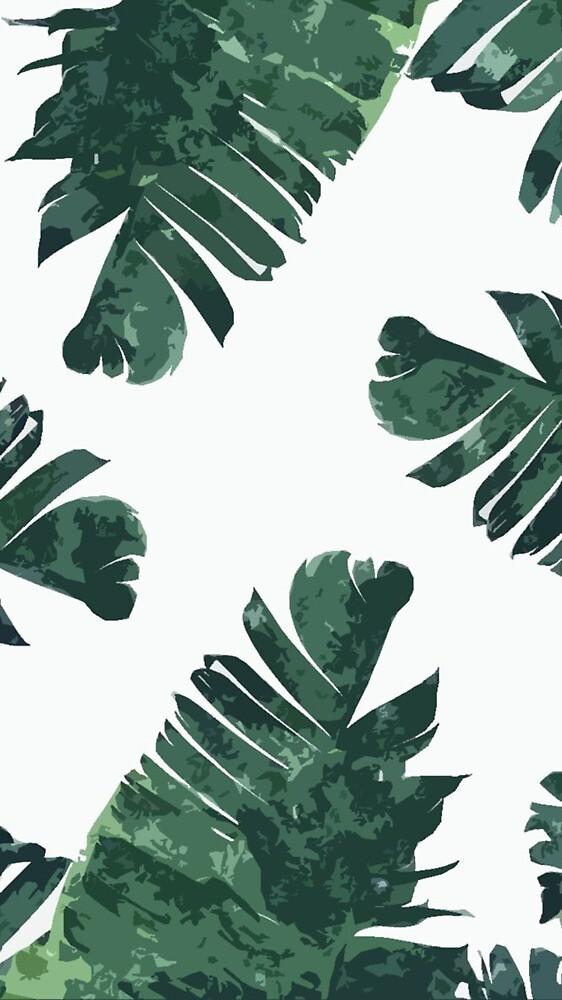 Fern leaves  by yvesart