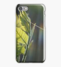 Fresh Green Leaves With Spiderweb iPhone Case/Skin