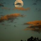 The Whole Of The MooN by Graeme M