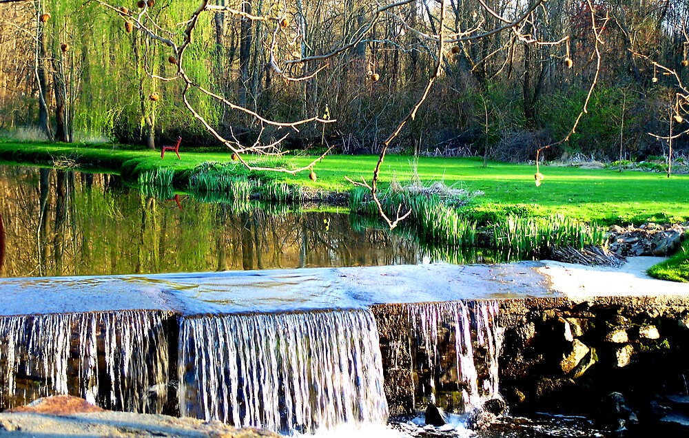 Falls Reflections by Judi Taylor