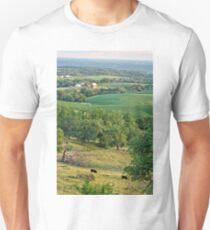 Balltown Farm 2 Unisex T-Shirt