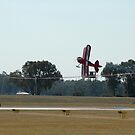 Pitts VH-UDP Ribbon Cut-Albury Airshow,NSW 2008  by muz2142