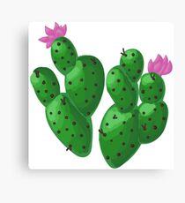 Cactus Beb Canvas Print