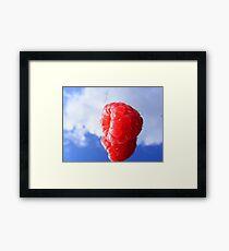 rasberry sky Framed Print