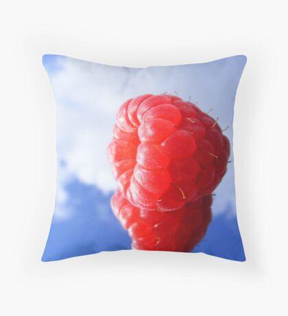 rasberry sky Throw Pillow