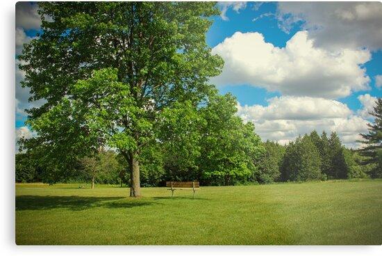 Park Bench Landscape by ArielClark93