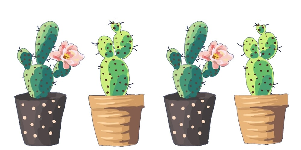 4 Cactus by Kolorya