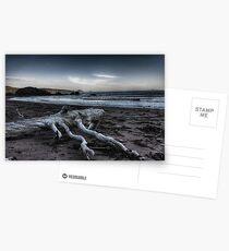 Driftwood Postcards