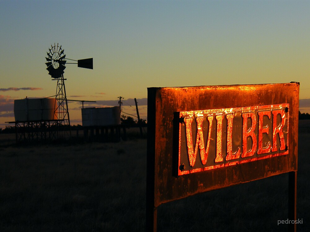 Wilber sign under the setting sun by pedroski