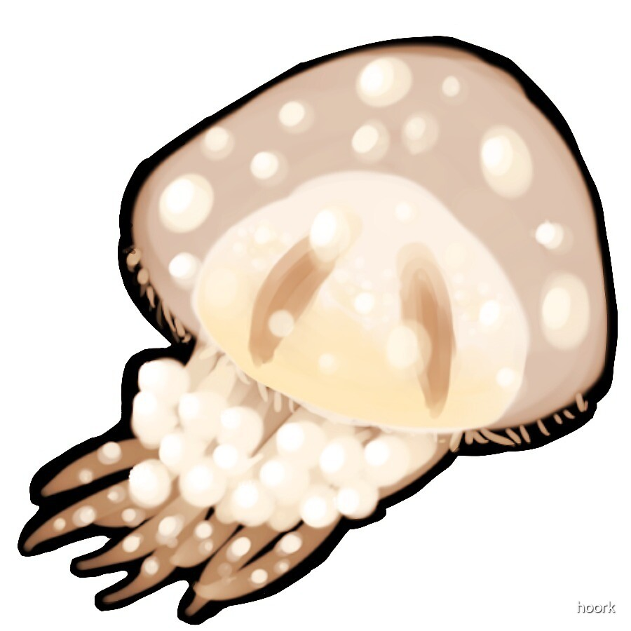 Jellyfish - Orange by hoork