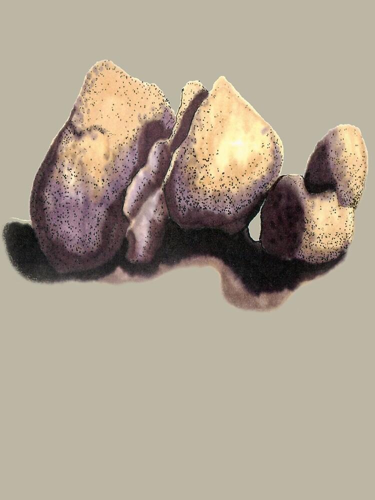SOFT boulders  by James Lewis Hamilton
