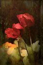 Two Poppies by Elaine Teague