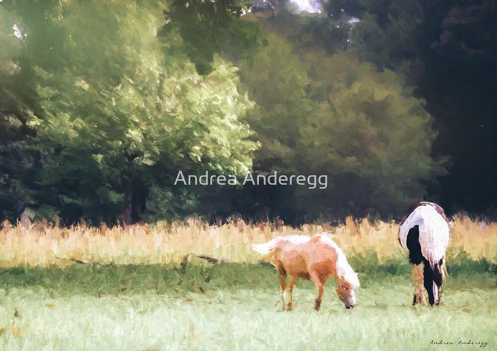Horses by andreaanderegg