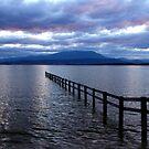 Across The Bay by Asoka