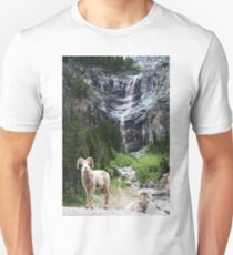 The Perfect Backdrop T-Shirt