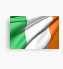 Ireland flag Canvas Print
