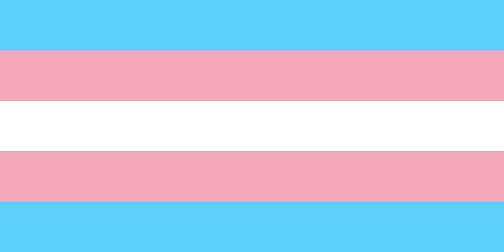 Transgender Pride Flag by taleea