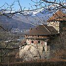 Schloss Vaduz by BigAl1