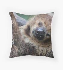 Sleep Please Throw Pillow