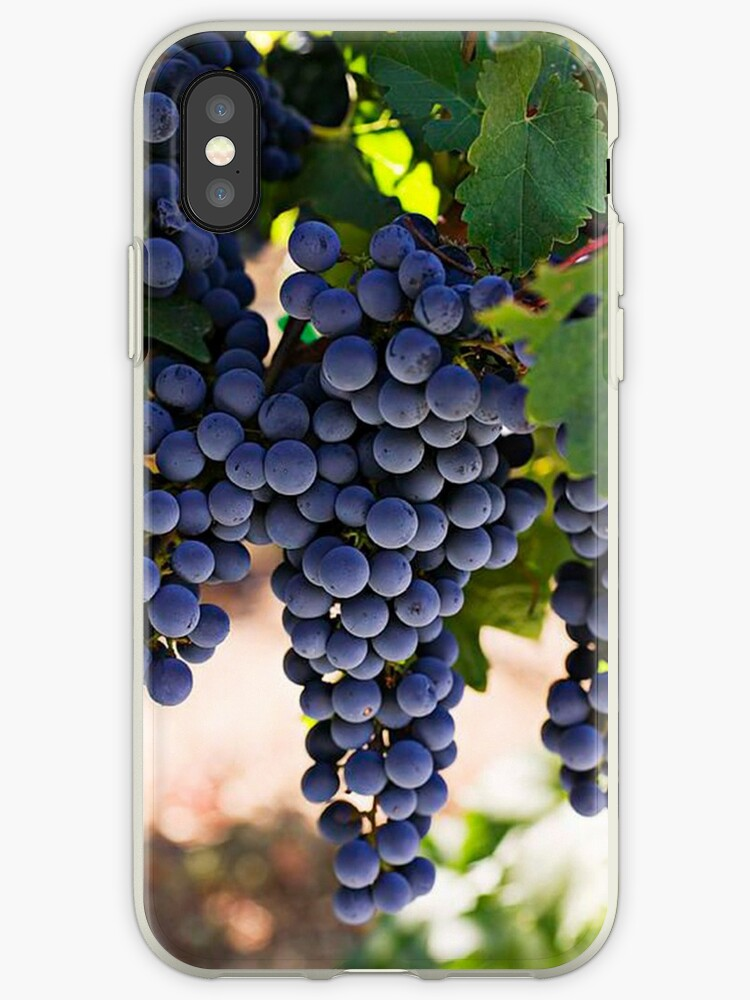 Fresh Grapes From the Tree by Arjan Schuurman