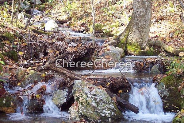 Flowing waters by ChereeCheree