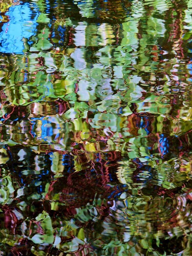 VIVID WATER REFLECTIONS 2 by lynareid