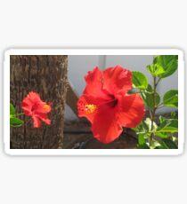 red hibiscus flower Sticker