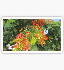 orange tropical flower Sticker