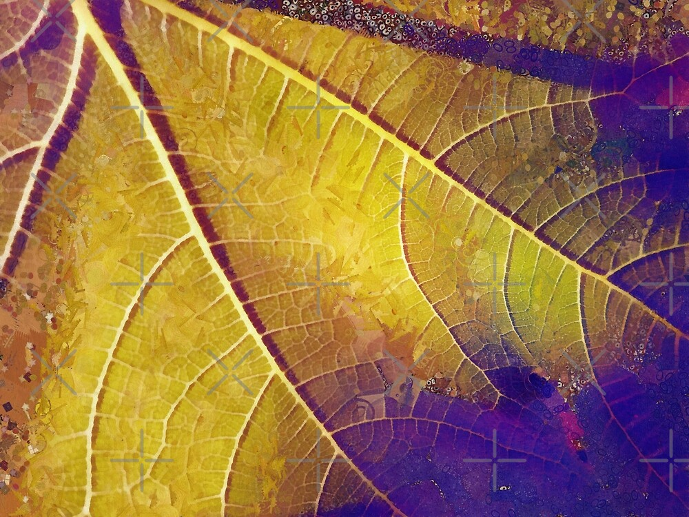 Leaf in Purple and Yellow by heidiannemorris