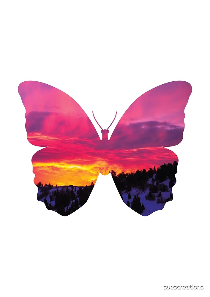 Colorful Double Exposure Butterfly by suescreations