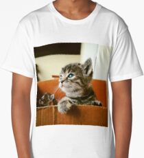 Adorable tabby cat kittens looking out of a box - very cute! Long T-Shirt