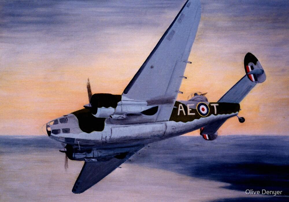 Hudson 402 Sqn. RAF by Olive Denyer