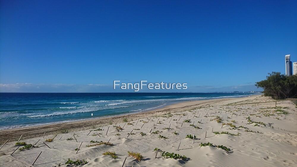 Aussie Beach  by FangFeatures