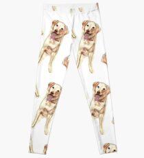 Happy yellow Labrador  Leggings