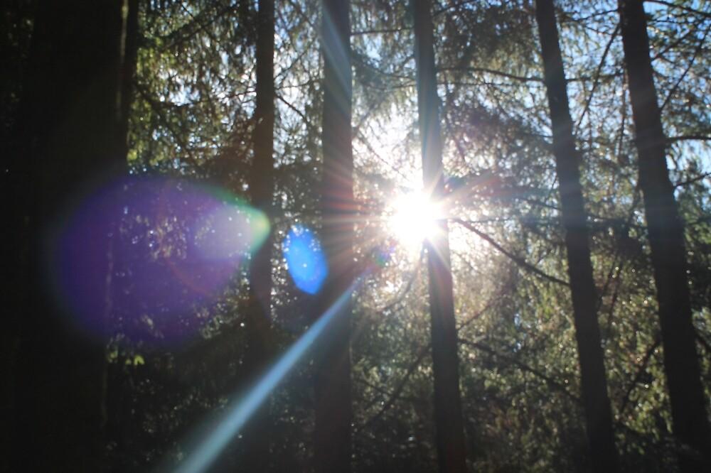 light Effect by rachariedel