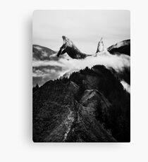 Magic place Black and white Canvas Print