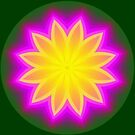 Floral Symmetry by Dana Roper