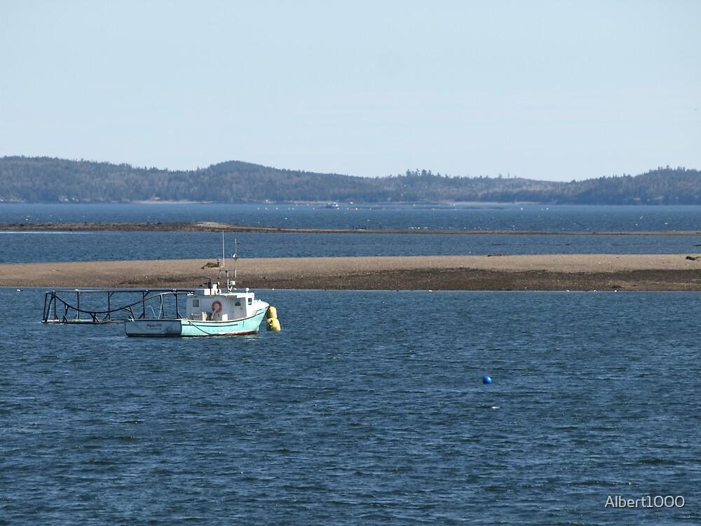 NC fishing boat #2 by Albert1000