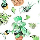 All the Plants I've Ever Loved Pattern (White) by scatterbee
