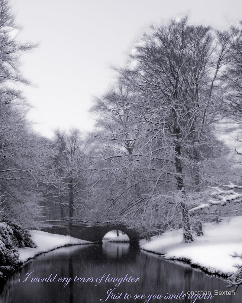 Winter Scene by Jonathan  Sexton