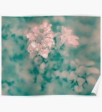 Surreal Floral Poster