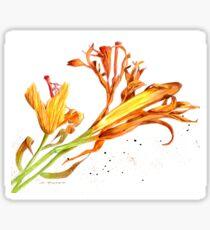Schwindende Schönheiten Sticker
