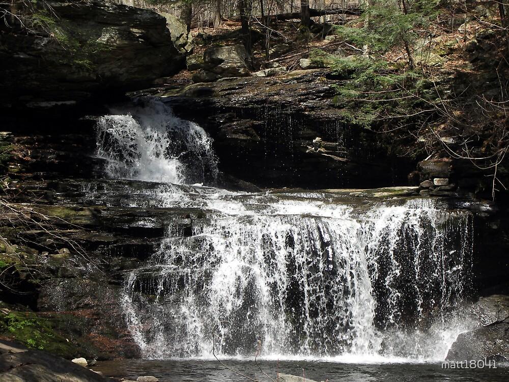 Ricketts Glen Falls by matt18041