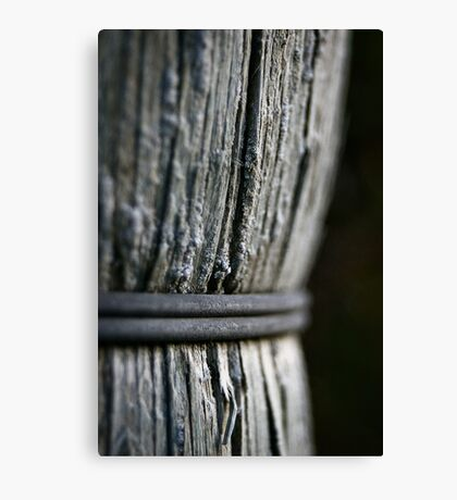 Entwined Canvas Print