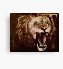 Panthera leo (Lion) Canvas Print