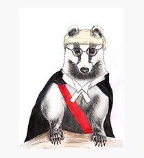 Judge Badger Photographic Print