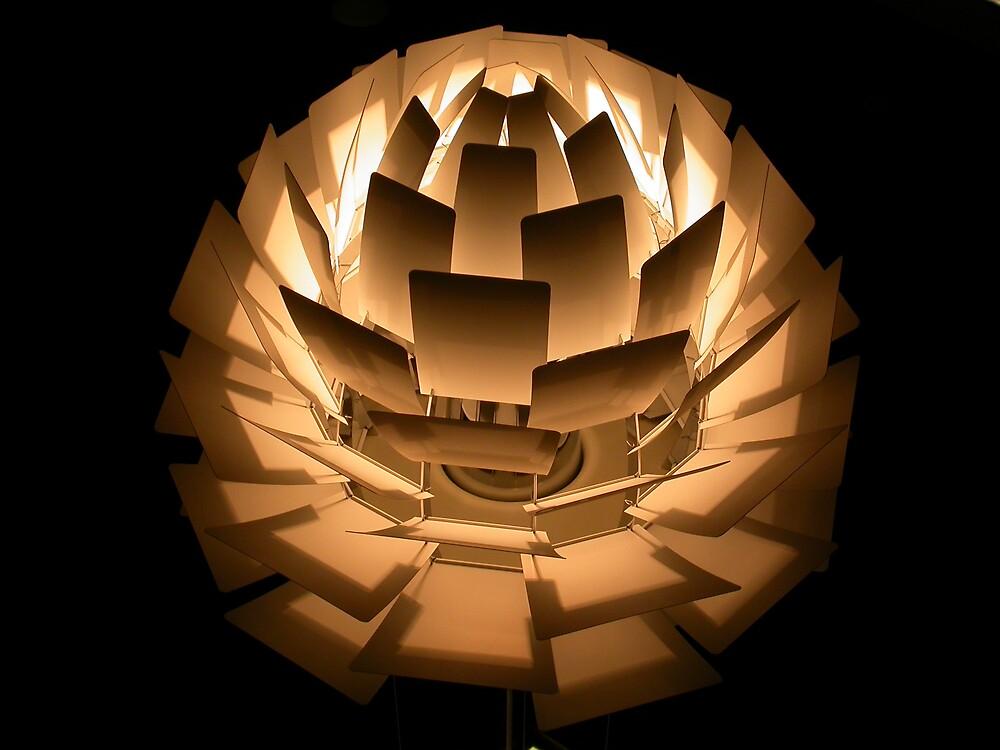 electro lotus 2 by k c