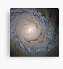 Starburst Galaxy (Messier 94) Wallpaper Canvas Print
